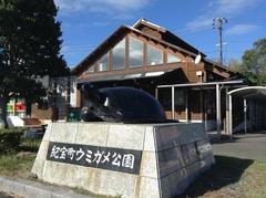 ウミガメ公園.jpg