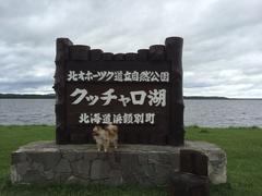 クッチャロ湖とカール.jpg