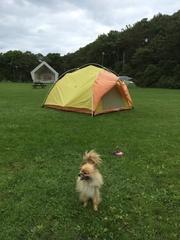 クッチャロ湖テントとカール.jpg