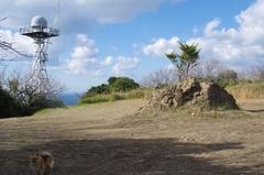 テレビ塔か自衛隊.jpg