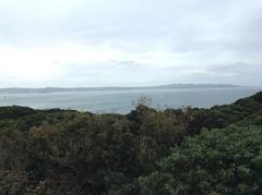 三浦半島は向側.jpg