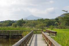 上堰潟公園水辺多宝山2.jpg