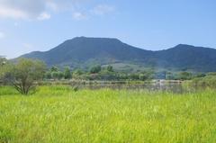 上堰潟公園角田山2.jpg