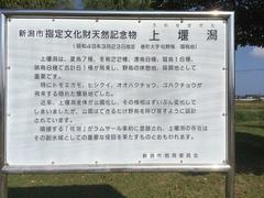 上堰潟公園解説板.jpg