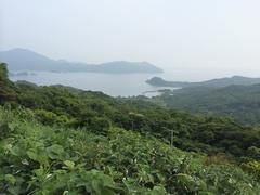 久志湾北側から.jpg