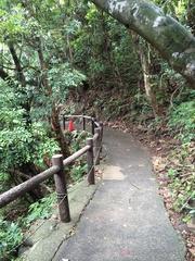 佐多岬へ続く道.jpg