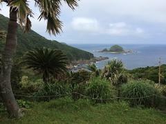 佐多岬東側の枇榔島.jpg