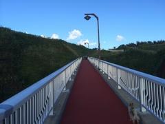 元和台海浜公園5海のプールスロープ1.jpg
