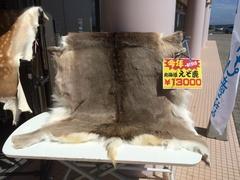原生花園エゾシカ13000円.jpg