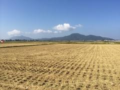 右から角田山多宝山奥が弥彦山.jpg