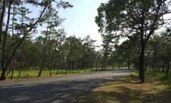 土佐西南大規模公園1.jpg