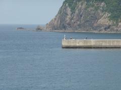 坊浦の海釣り人.jpg