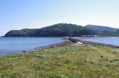 夏泊半島油大島側から.jpg