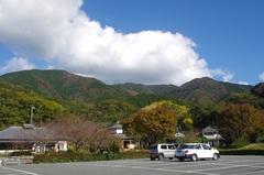 天気いいぜ道の駅 花の三聖苑伊豆松崎2.jpg