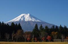 富士吉田から富士山.jpg