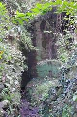 岩室洞外から見ると.jpg