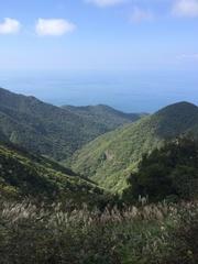 弥彦山スカイライン峠から日本海.jpg