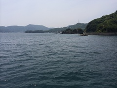 愛南町古月 釣りした場所.jpg