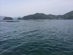 愛南町柿ノ浦南西方向 当木島.jpg