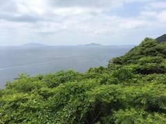 愛南町武者泊 高床鼻から南方向 右が鵜来島(うぐるしま).jpg
