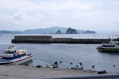 愛南町武者泊の港 民宿の渡し船が多い.jpg