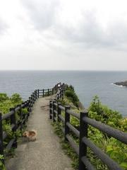 日向岬遊歩道.jpg
