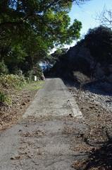 最後の切り場への道2.jpg