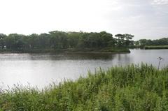 朝の尾岱沼2.jpg