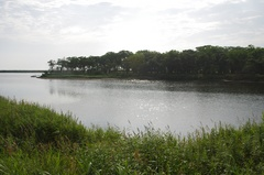 朝の尾岱沼3.jpg