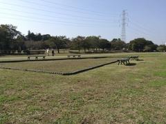 柏ふるさと公園.jpg
