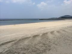 江口蓬莱館の前の海岸北方向.jpg