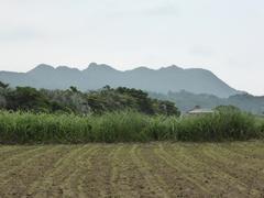 池田湖北方向の山.jpg