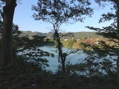 津久井胡.jpg