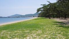 津田の松原と海水浴場.jpg