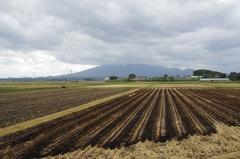 津軽平野から岩木山.jpg