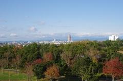 浜松市内を眺望.jpg