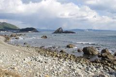 海岸から弁天島(蜑取島あまとりじま).jpg