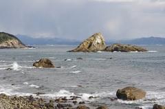 海岸から弁天島(蜑取島あまとりじま)近く.jpg