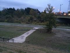 漁川流木.jpg
