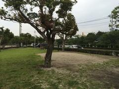 瀬戸公園駐車場の方向.jpg