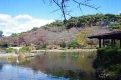 烏ヶ森公園1.jpg