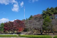 烏ヶ森公園2.jpg