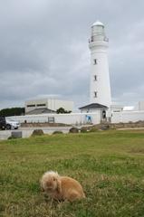 犬吠埼灯台とラヴィ.jpg