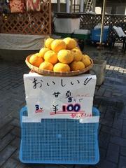 甘夏3つで100円.jpg