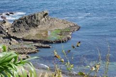 白神神社から展望台の海岸.jpg