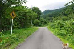 福島町岩部集落通学路の標識上に登る.jpg