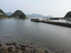 秋目漁港野間岬をショートカットできる最後の地点.jpg