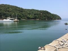 粟野漁港.jpg