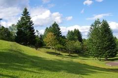 緑のふるさと森林公園.jpg