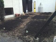 菜園完成.jpg